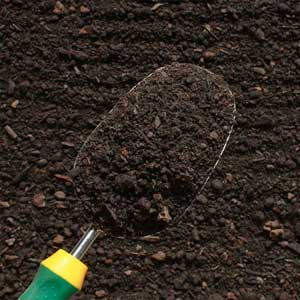 top soil in Melbourne